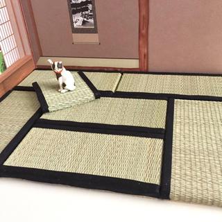 ハンドメイド☆ミニチュア 畳 6畳半セット 黒(ミニチュア)