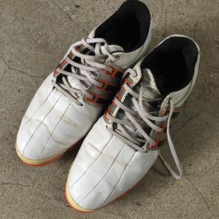 アディダス(adidas)のゴルフシューズ (シューズ)