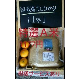 静岡県産 特選A米 ニューサマーおまけ付き(米/穀物)