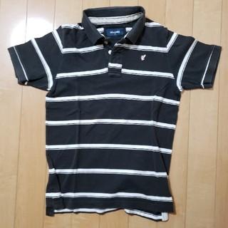 バックナンバー(BACK NUMBER)のback numberポロシャツ(シャツ)