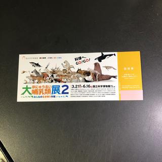 peco様専用です。大哺乳類展2 国立科学博物館(美術館/博物館)