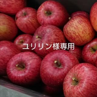ユリリン様専用 加工用りんご(ふじ)(フルーツ)