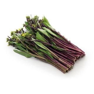 紅菜苔+フェザーからし菜 種子 計100粒(野菜)