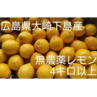 yucau様専用 広島県大崎下島産 無農薬レモン 4キロ(フルーツ)