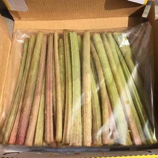即購入OK旬物✧とっても美味しい天然山ふき500g(※葉はつきません)野菜山菜(野菜)