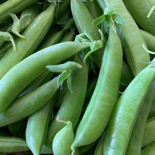 スナップエンドウ  1kg(野菜)