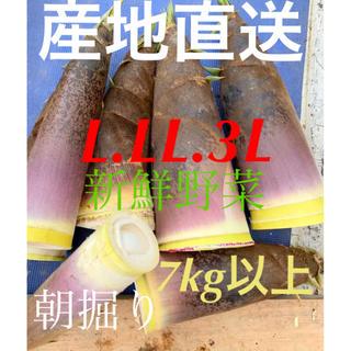 静岡県産☆ たけのこ 7kg以上!米ぬか付き♪L.LL.3L(野菜)