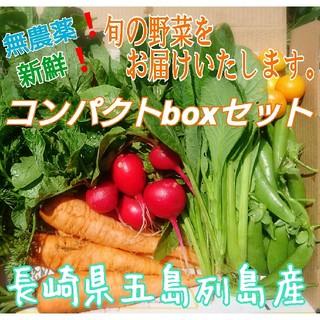 無農薬❗新鮮野菜セット(コンパクトbox) 長崎県五島列島産