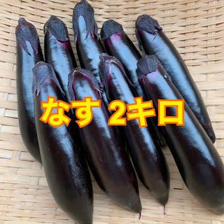 なす 2キロ(野菜)