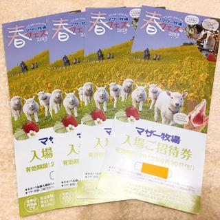 マザー牧場 入場ご招待券【4枚】(遊園地/テーマパーク)