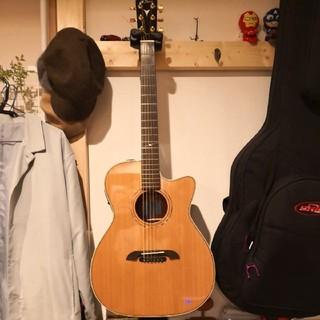 [希少特価]K.yairi WY-1AP Roland AP-1 オール単板(アコースティックギター)