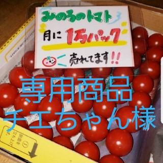 チエちゃん様専用 みのるのミニトマト(野菜)