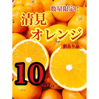 清見オレンジ 訳あり品 お買い得価格(フルーツ)