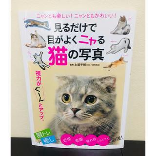 見るだけで目がよくニャる猫の写真  眼トレ本 眼がよくなる本