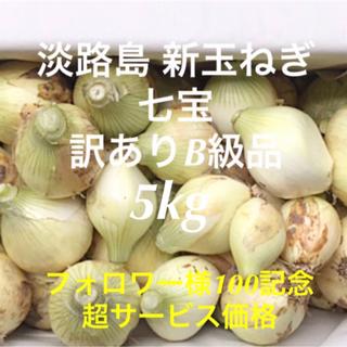 淡路島新玉ねぎ 七宝 5kg 訳あり フォロワー様100記念 (野菜)