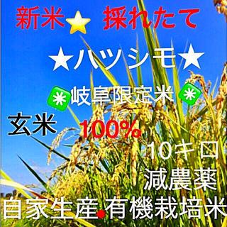 ⭐︎ときさん様専用⭐︎(米/穀物)
