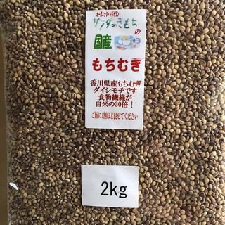 もちむぎ 2kg (米/穀物)