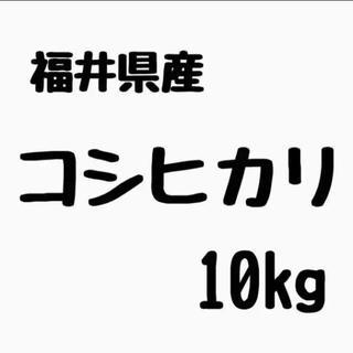 こしひかり 米 コシヒカリ 単一原料米 精米 福井県産 10kg(米/穀物)