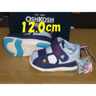 オシュコシュMoonStar12.0cm2Eネイビー超軽量371rx