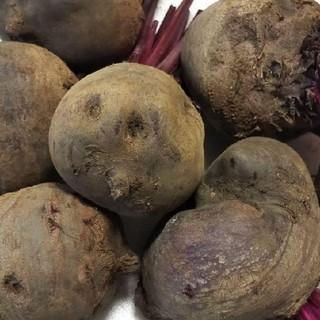 『訳あり ビーツ 1.5 キロ』レア野菜 ボルシチお野菜 ビート 送料込(野菜)