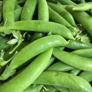 スナップえんどう たっぷり1キロ(野菜)