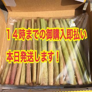 14時迄1,400円!旬物✧とっても美味しい天然山ふき500g(※葉なし)(野菜)