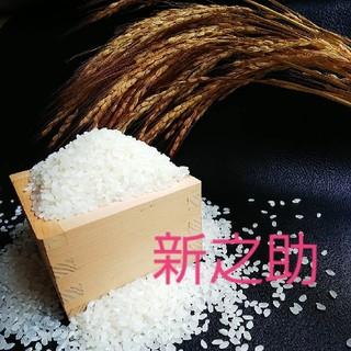 新潟県産新之助500グラム(米/穀物)