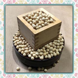 新穀 北海道産 大豆 10kg 大粒大豆(米/穀物)