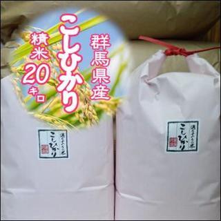 お試し価格 ! 群馬県みなかみ産 コシヒカリ  精米20 ㎏(米/穀物)