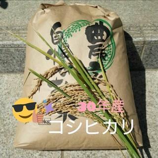 はちみつ様専用です(*^^*)コシヒカリ玄米10kg(米/穀物)