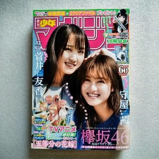 菅井友香 守屋茜 16ページ 少年マガジン 2019年3月13日通巻3605(少年漫画)