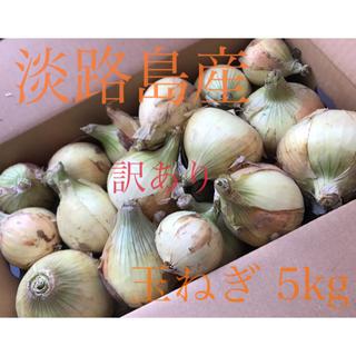 淡路島産 新玉ねぎ 訳あり 5kg(野菜)