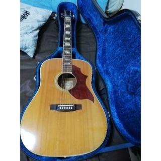 ギブソン(Gibson)の73s'Takamine élite TW-16 acoustic guitar(アコースティックギター)