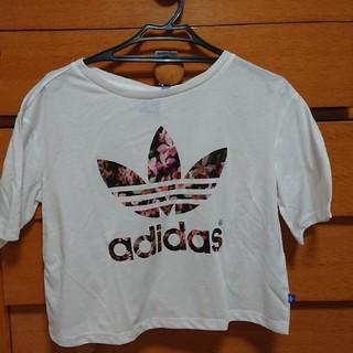 アディダス(adidas)のadidasオリジナルス Tシャツ(Tシャツ(半袖/袖なし))