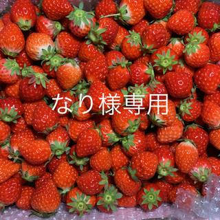 なり様専用●小粒苺2kg●さがほのか●クール便(フルーツ)