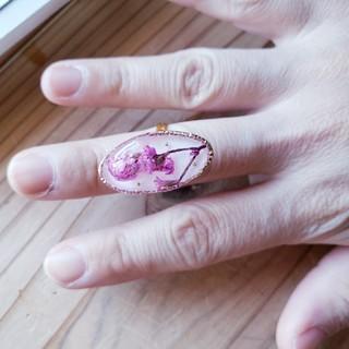 パープル フリーサイズリング(リング(指輪))