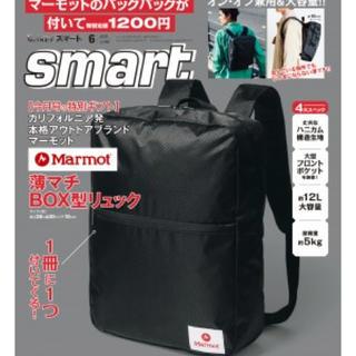 マーモット(MARMOT)のsmart 6月号 付録 Marmot リュック バックパック(バッグパック/リュック)