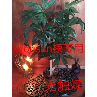 人工観葉植物 パキラ中(置物)