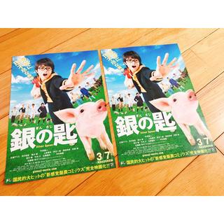 セクシー ゾーン(Sexy Zone)の銀の匙 フライヤー(日本映画)