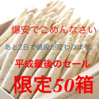北海道の郵便局よりも安い!北海道産ホワイトアスパラガス Lサイズ5束(野菜)