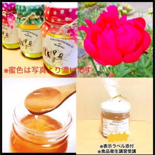 鳥取県産純粋生蜂蜜500g(野菜)