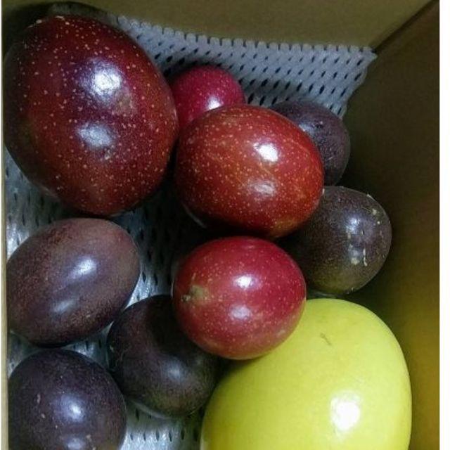 ミコさま専用 パッションフルーツセット! 食品/飲料/酒の食品(フルーツ)の商品写真
