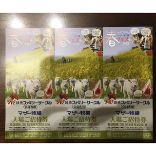 マザー牧場 入場ご招待券   3枚セット(遊園地/テーマパーク)