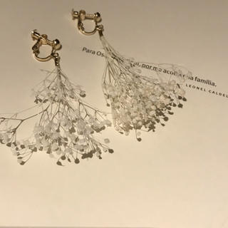 ジーナシス(JEANASIS)のdry flower earring GW SALE(イヤリング)
