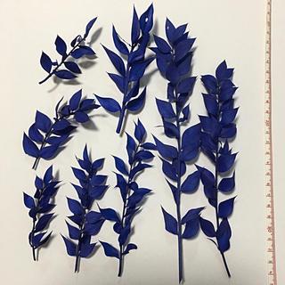 ラスカス  海 ブルー 青色 プリザーブドフラワー 東北花材(プリザーブドフラワー)
