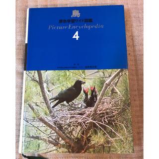 ガッケン(学研)の原色学習ワイド図鑑 4 「鳥」(その他)