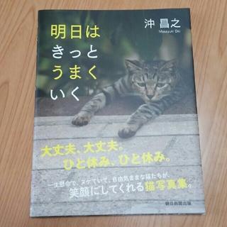 アサヒシンブンシュッパン(朝日新聞出版)の明日はきっとうまくいく☆沖昌之☆猫の写真集(その他)