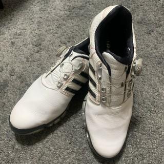 adidas - adidasゴルフシューズ 26.5