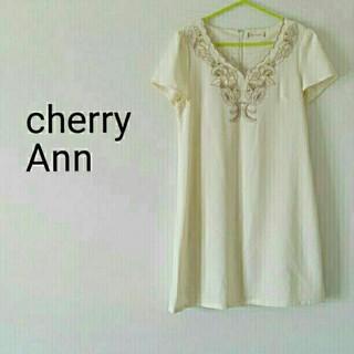 チェリーアン(cherry Ann)の美品*Cherry Ann*刺繍ジョーゼットワンピース(ひざ丈ワンピース)