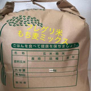 フレッシュグリーン米(もち麦ミックス)(米/穀物)